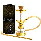 Royal Smoking Cachimba Shisha elegante diseño de cachimba en aluminio y acrílico de...